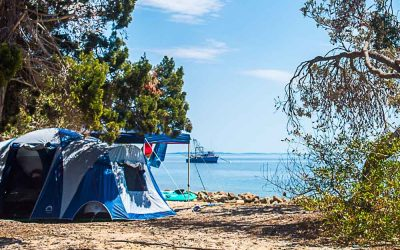 Best Camping Near Brisbane – 20 Awesome Campsites within a 2 Hour Drive