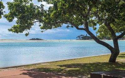 Review: Cotton Tree Camping Sunshine Coast