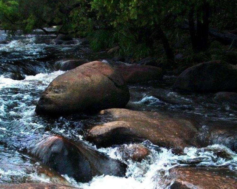 Flannagans Reserve