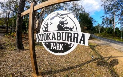 Kookaburra Park Review – Farm Stay Sunshine Coast