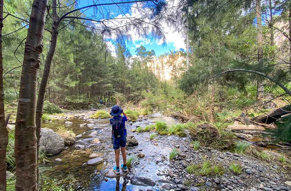Carnarvon Gorge Walks