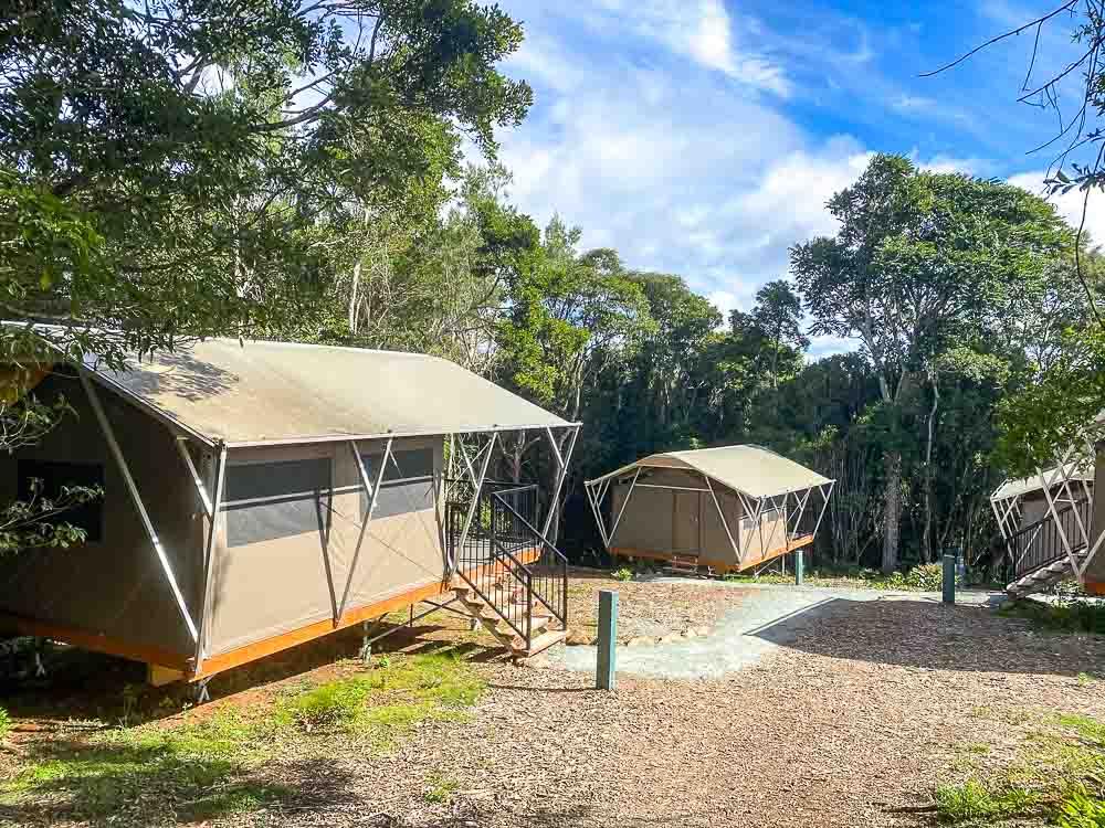 O'Reilly's Campground